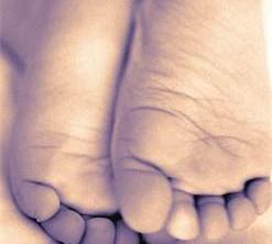 cropped-tenderfoot-logo5.jpg